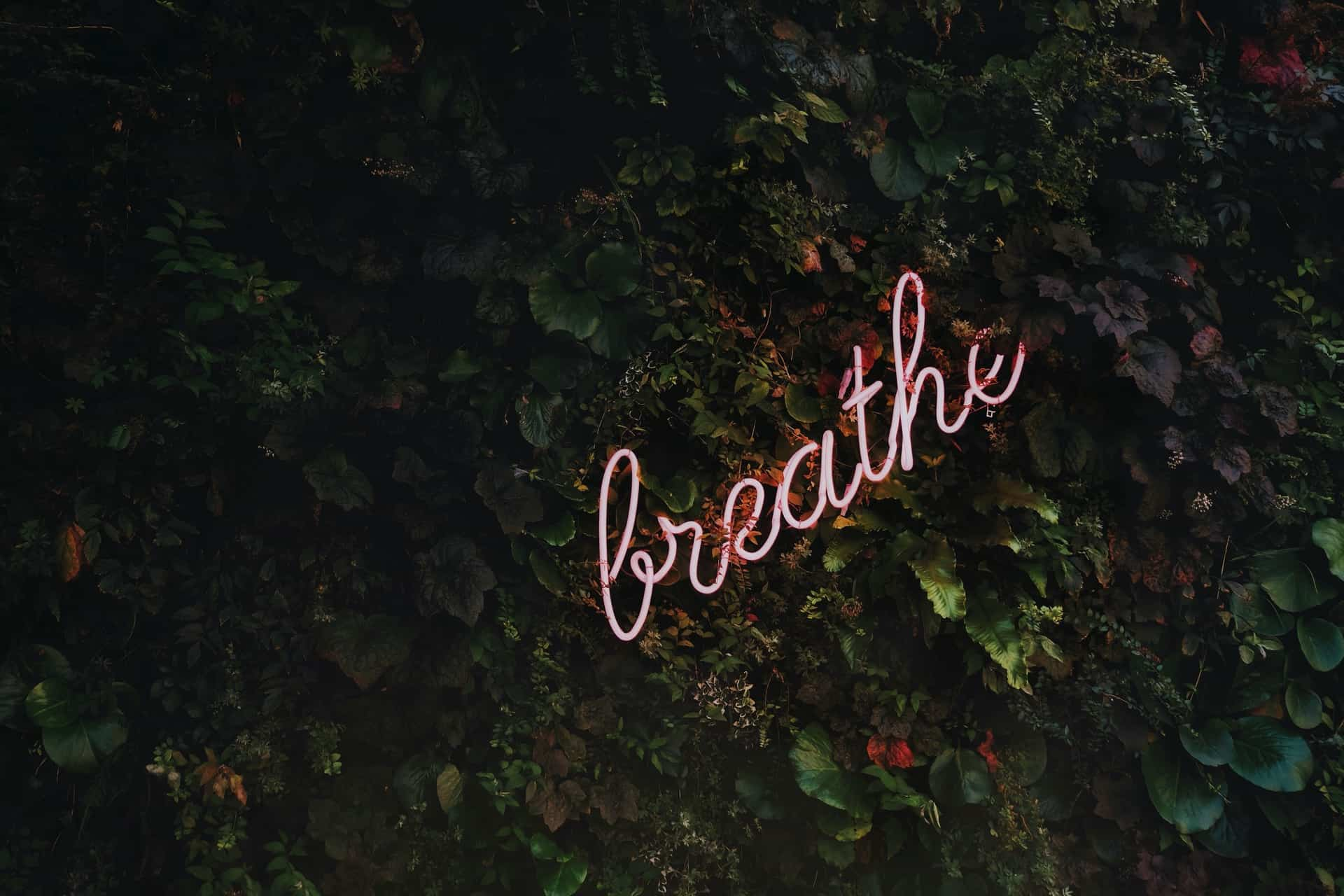 tim goedhart vnpTRdmtQ30 unsplash - 5 ways to relax and reconnect with yourself during quarantine
